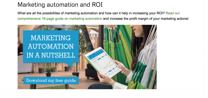 Marketing automation whitepaper CTA at the end of a blog post