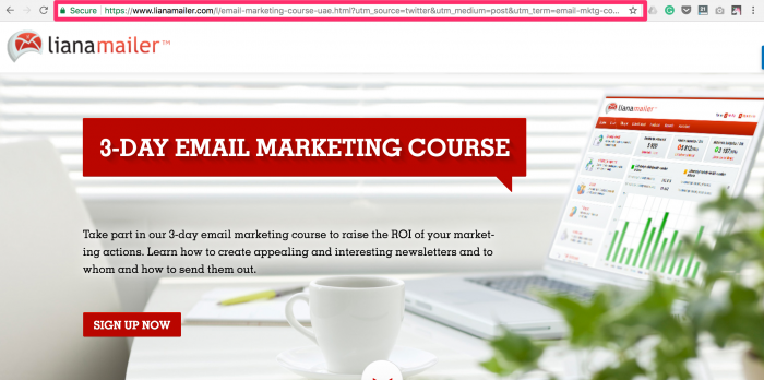 Email Marketing Course Liana Technologies